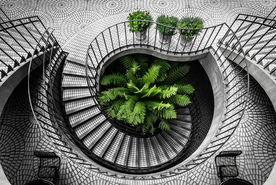 schody se zelení